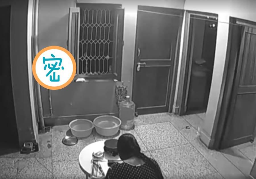 網友分享自家監視器拍下的畫面,疑似為動物靈體的白色爬過去。(圖/翻攝自靈異公社)