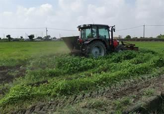 推廣禽畜糞取代化肥 農友、酪農、環境多贏