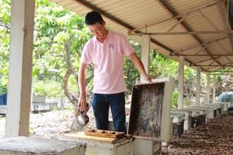 三度獲特等獎 青農陳威年獲蜂蜜產銷履歷認證