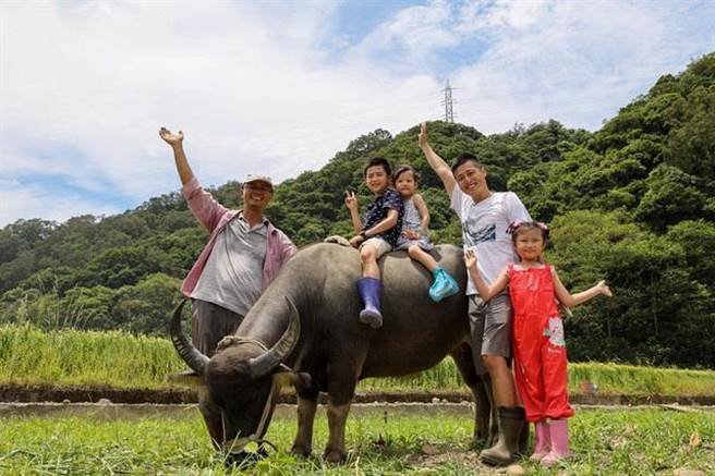 关西六福庄携手水牛学校,亲近水牛骑上牛背,体验一日小牧童。( 图/六福旅游集团)