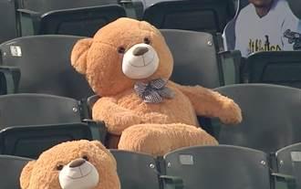 MLB》彈性真好 泰迪熊在觀眾席被界外球爆頭