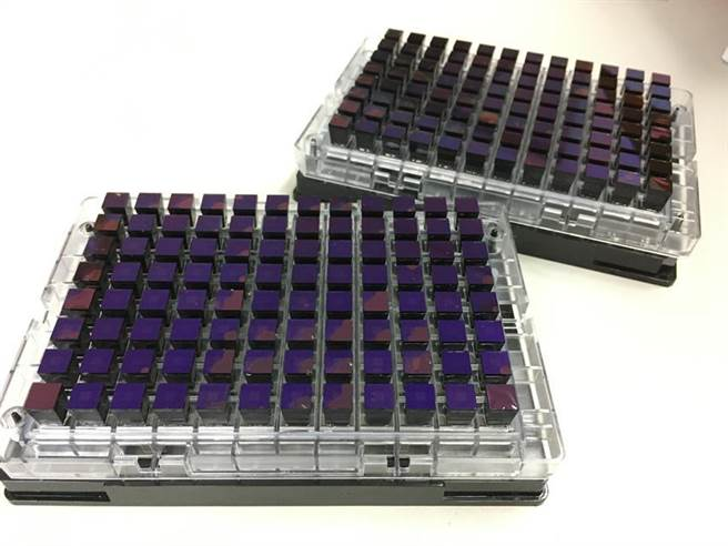 種鴨蛋殼顏色輔助,大幅提升育種效率。(圖/畜試所提供)