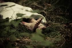 他出差連線監視器看家人 親睹「妻子被兒子勒死ing」頭綑保鮮膜拖進樹林藏屍