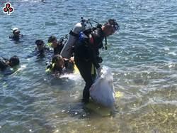 減少塑膠海洋廢棄物 環團籲政府數據管理推動限塑