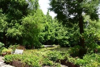 尋找最美祕密花園 漫遊田尾觀光環園道4.7公里