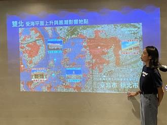 海平面上升加風暴潮 2050年台灣被淹溢面積逾2千平方公里