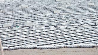 彰濱光電板遮蔽 潮間帶生態堪憂