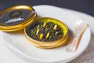 台北餐盤增18家 奪星種子選手