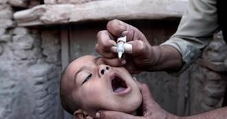 全球公衛里程碑 小兒麻痺症病毒在非洲絕跡