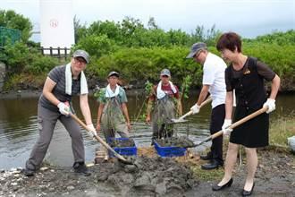 重建雲林海岸林貌 林務局進行鹽溼地植栽復育