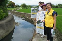 生活廢水全流進中和排水 鎮平灌溉水質差外還常淹水