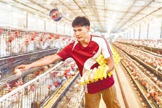 陸籲理性看待農產價格波動