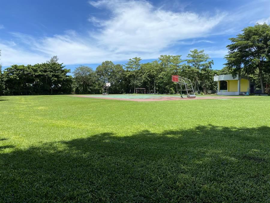 種樹降溫 台南校園綠覆率平均逾50% - 寶島
