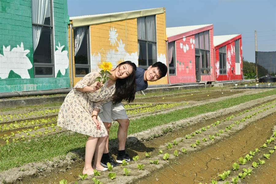 雲林晁陽農場發展綠色經濟 打造地方創生示範點 - 生活