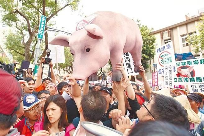 2016年各地養豬協會與豬農到立法院外抗議,指責民進執政後就改變立場開放美豬進口,置農民生計於不顧。(資料照,杜宜諳攝)