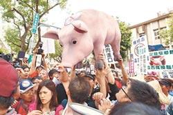 美豬牛能為台灣打通活路?