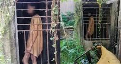 旅行驚見「一女子被關在鐵籠內」長達25年 村民曝:她患有精神疾病