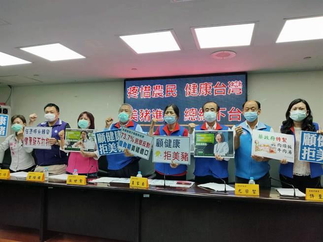 台南市議會國民黨團高喊「疼惜農民、健康台灣;美豬進口、總統下台」。(洪榮志攝)