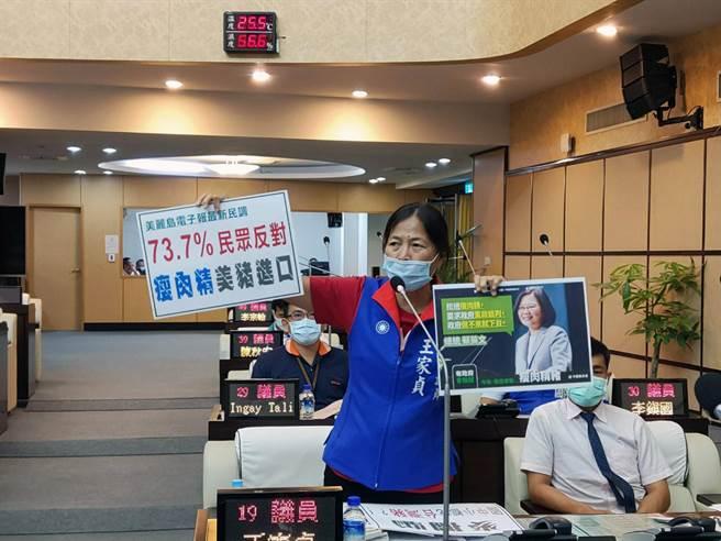 台南市議會臨時會開議第一天,美豬牛解禁成為議場焦點。(洪榮志攝)