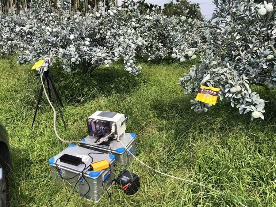 不輸慣行農法 草生栽培法減碳顧生態 - 生活