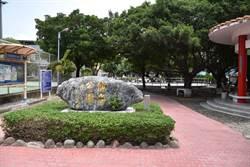 竹南鎮公所爭取3千萬改建風雨球場