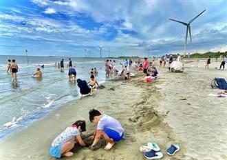 市議員爭取大安設置沙灘車及海上活動 觀旅局:視水質採滾動式調整