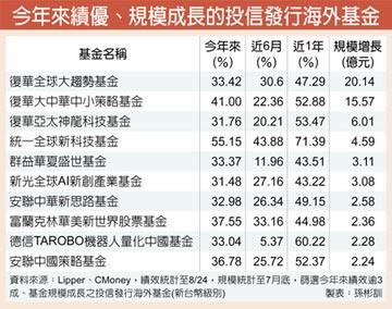 大中華、全球股基金 今年大贏家
