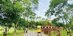 鳳梨故鄉 富興社區森林公園
