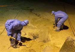 小琉球沙灘驚見豬屍 海巡採檢後就地焚燒掩埋