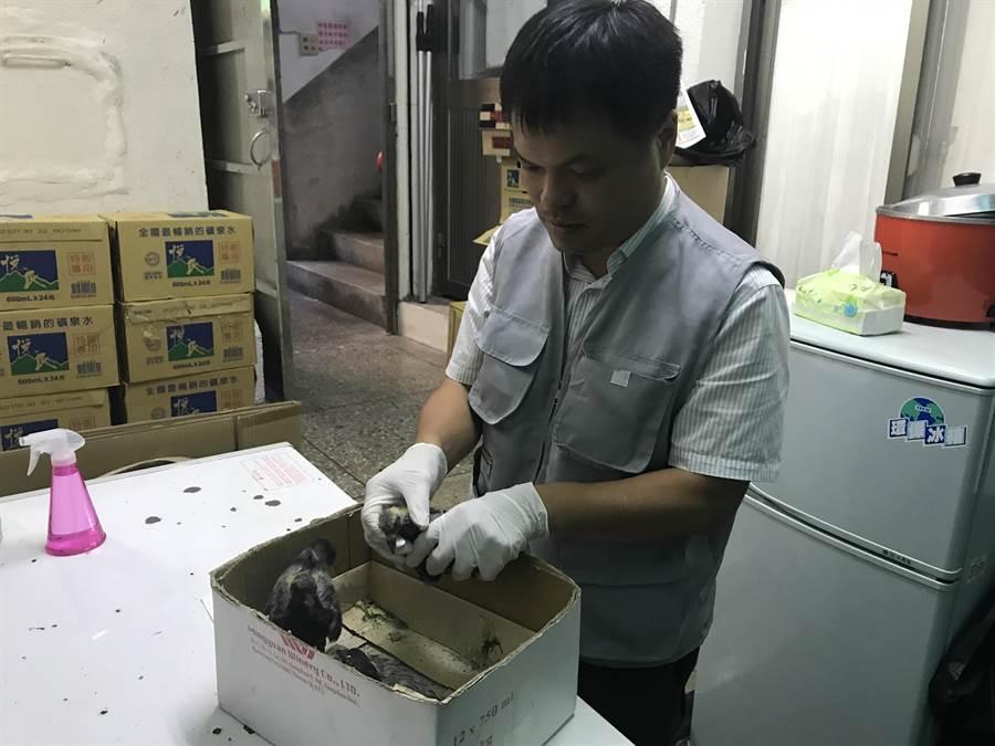 動保所長陳瑞濱指出,民眾寵物如同家中小孩,養牠更要妥善照顧牠。(陳彩玲攝)
