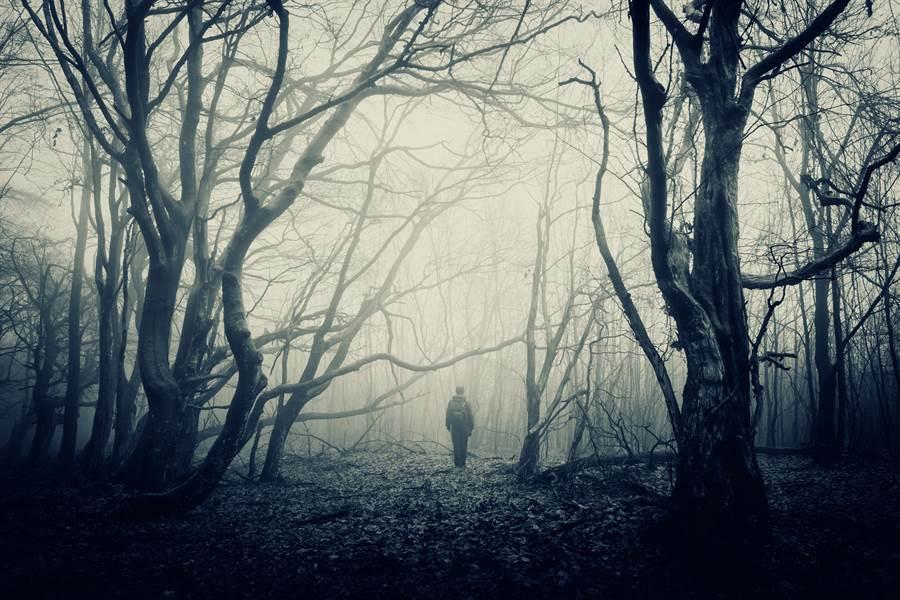 「4生肖」天生易有靈異體質,鬼月盡量避免前往山上、海邊、森林。(圖/Shutterstock)