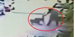 2比特犬攻擊路人驚悚畫面曝光!3人遭狠咬撕裂傷 他遭撲倒嚇逃命
