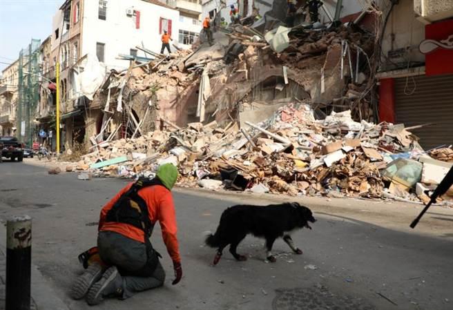 搜救犬發現貝魯特硝酸銨大爆炸現場可能有人生還的跡象後,智利和黎巴嫩搜救人員重新展開行動,向瓦礫深處挖掘。(路透)