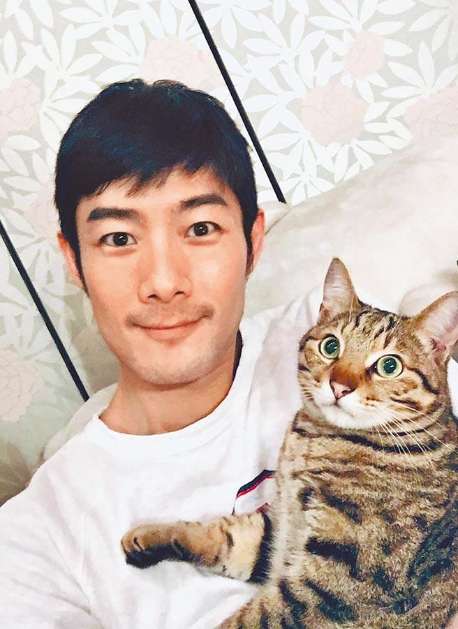 施易男愛貓「毛毛」當年流落街頭險斷肢,花30萬救回一命。(摘自臉書)