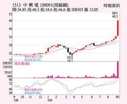 中興電 今年EPS戰3.8元