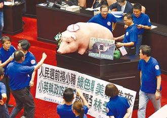 藍嗆公布瘦肉精容許量 未經國會同意