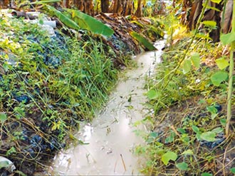 旗山汙水滲農地 限期清爐渣