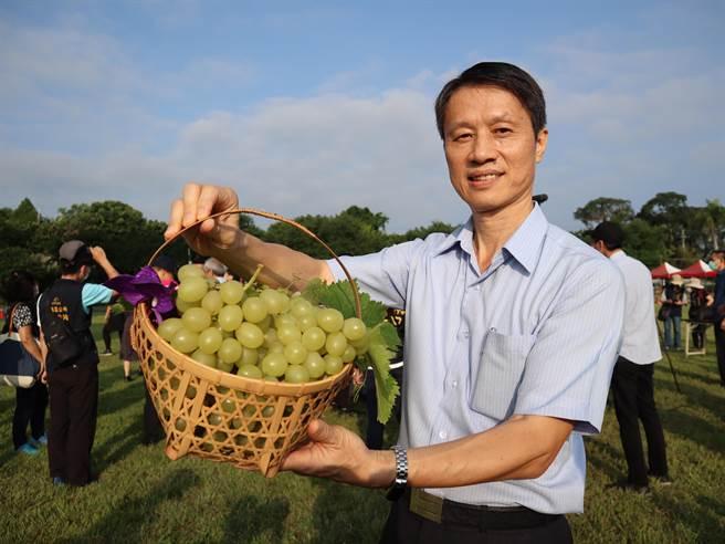 石岡區農會總幹事張東海表示,義大利葡萄屬高經濟作物,最大特色就是皮囊含有麝香味。(陳淑娥攝)
