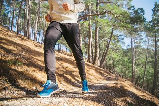 楊登嵙表示,秋天是養肺潤肺的最佳時機,只有養好肺,到了冬天才能腎氣充足少生病。(圖/Shutterstock)