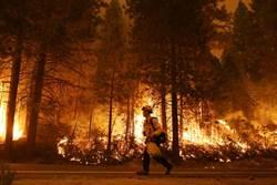 加州野火吹又生 竟是寶寶性別揭曉派對釀禍