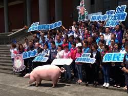 國民黨全國馬拉松開講食安公投  兩天衝萬份連署