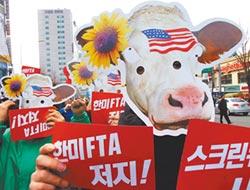 專家傳真-美牛開啟了台美BTA?日韓經驗的啟示