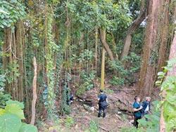 竹溪整治 哈赫拿爾森林低度開發