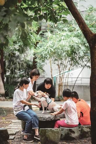 動物療癒 以愛溫暖城市
