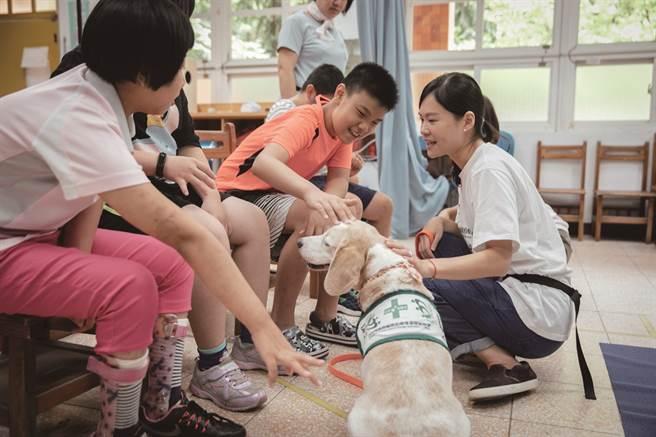 透過與動物的接觸,幫助特教孩子穩定情緒。(圖/蔡嘉瑋攝)