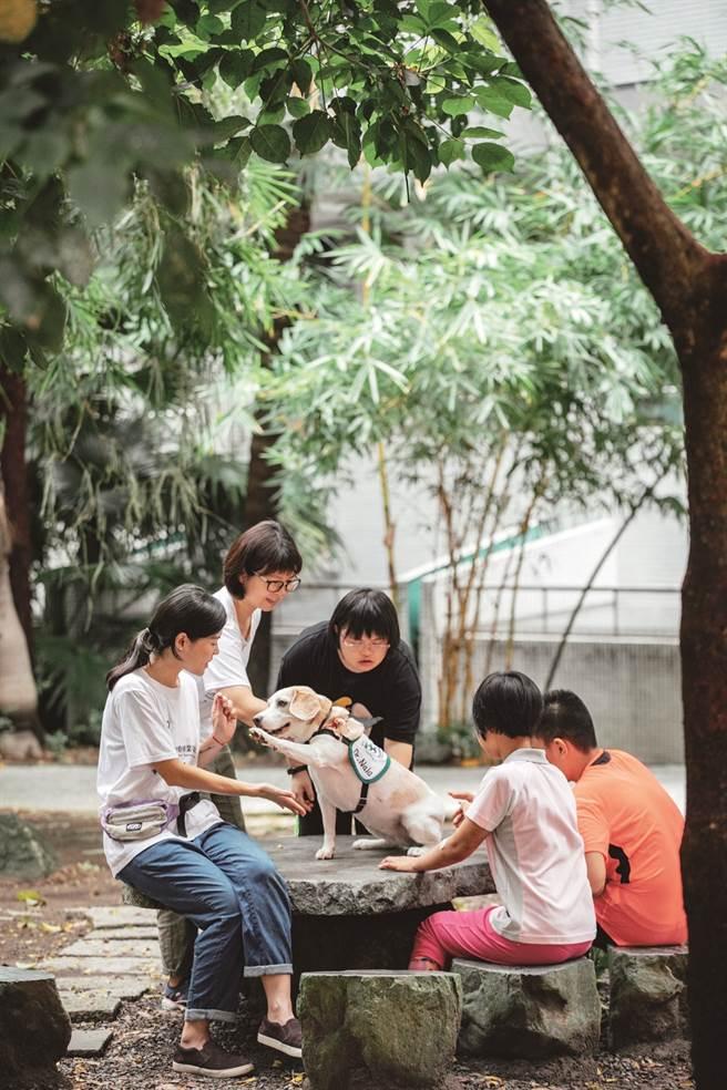 動物療癒--以愛溫暖城市(圖/蔡嘉瑋攝)