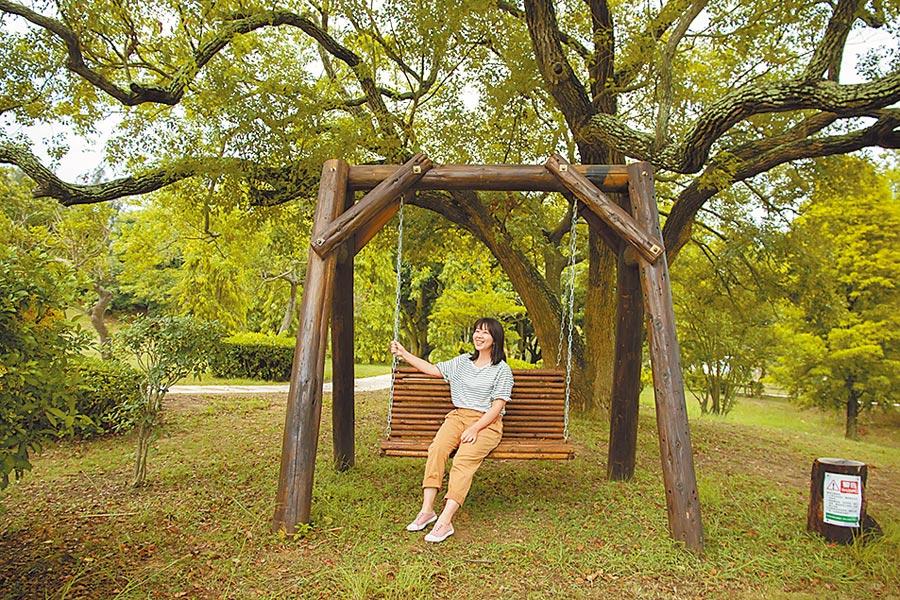 老木頭變裝置藝術 遊客爭打卡
