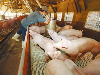 百億基金只是名詞 非僅為豬農