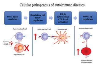 富禾生醫免疫細胞療法 獲重大進展