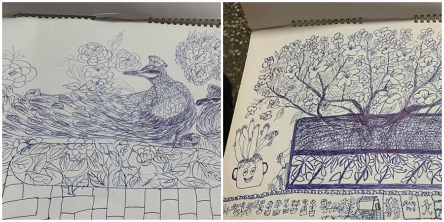 80歲阿齡阿嬤只用一支原子筆,勾勒出一幅幅畫作,讓她的孫女及網友不禁感嘆高手。(圖/翻攝自爆廢公社)